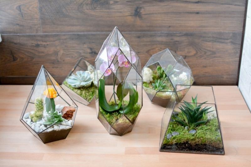 Вазы для флорариума.Мини-сад