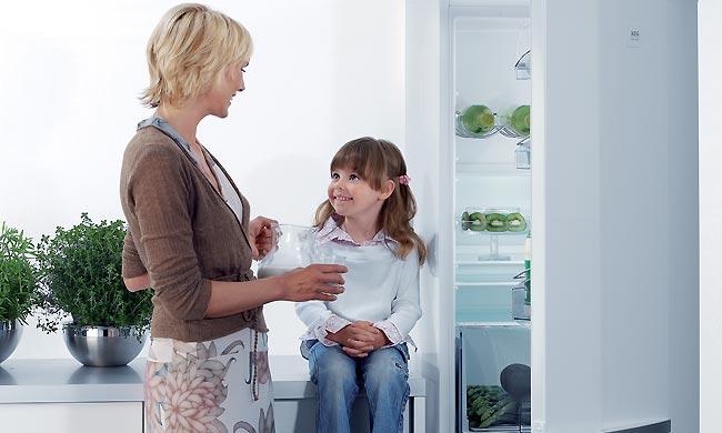 ИП Батьянов - Ремонт холодильников на дому в Кемерово и пригороде